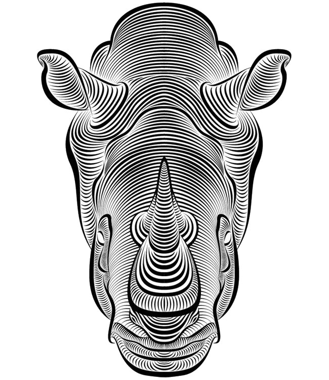 abstract coloring pages for adults - animal coloring pages adults owl bird lions etc
