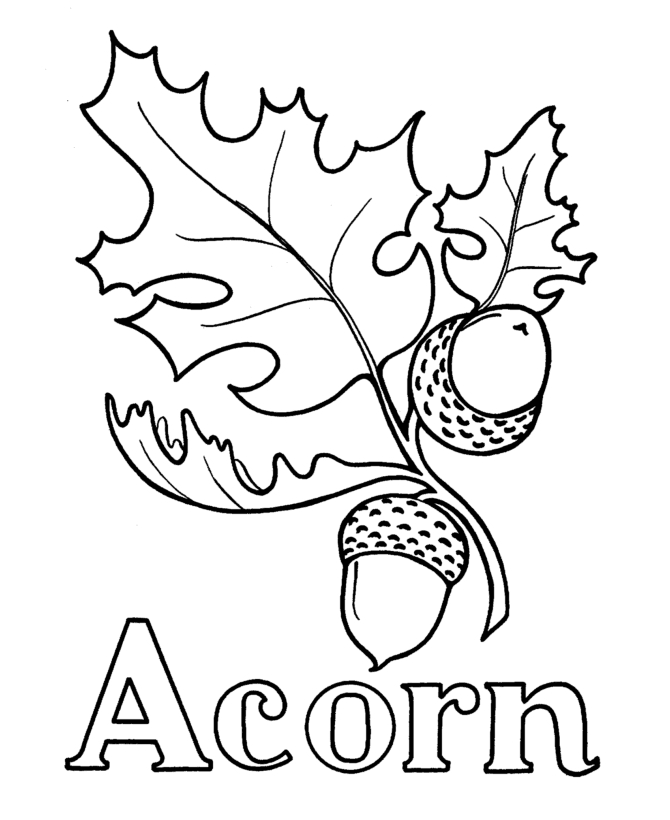 Acorn Coloring Page - Acorn Coloring Page Az Coloring Pages