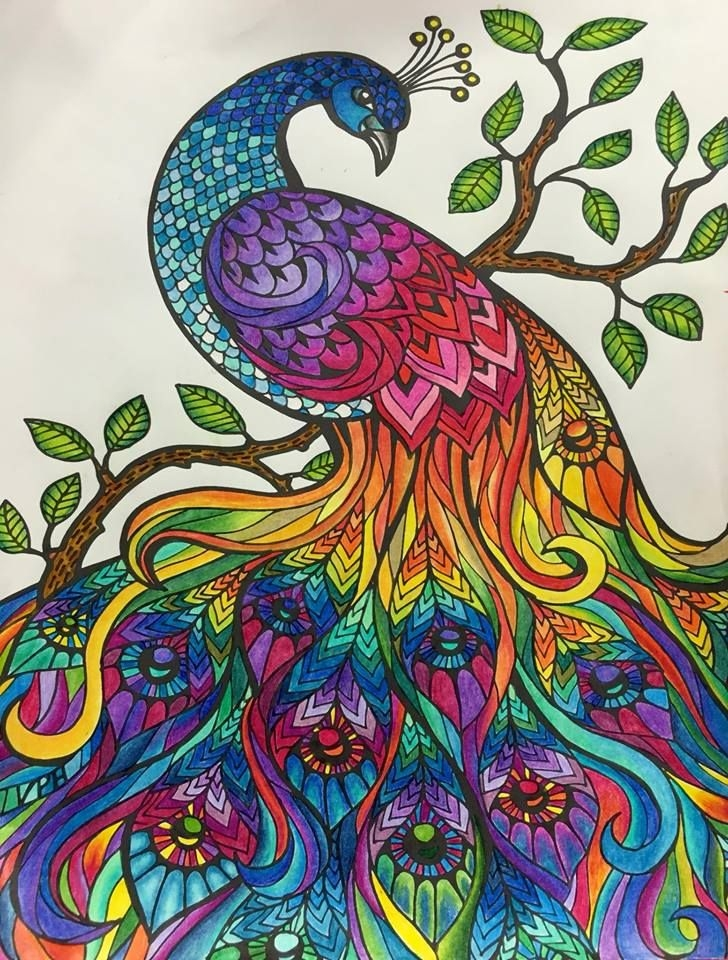 adult coloring pages colored - coloring books