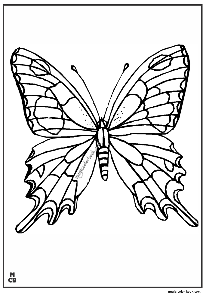 adult coloring pages patterns - adults patterns coloring pages butterfly