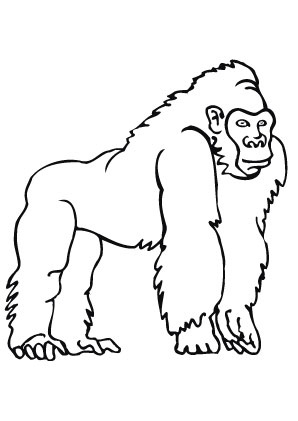 angry birds coloring pages - Stolzer Gorilla