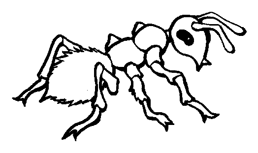 Ant Coloring Page - Fire Ant Coloring Page Animals town Animal Color