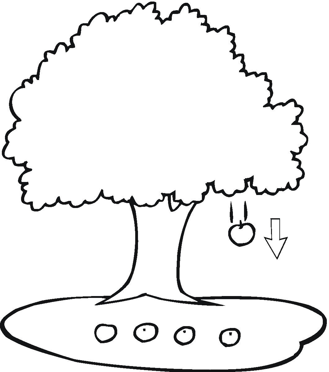 apple tree coloring page - apple tree coloring pages