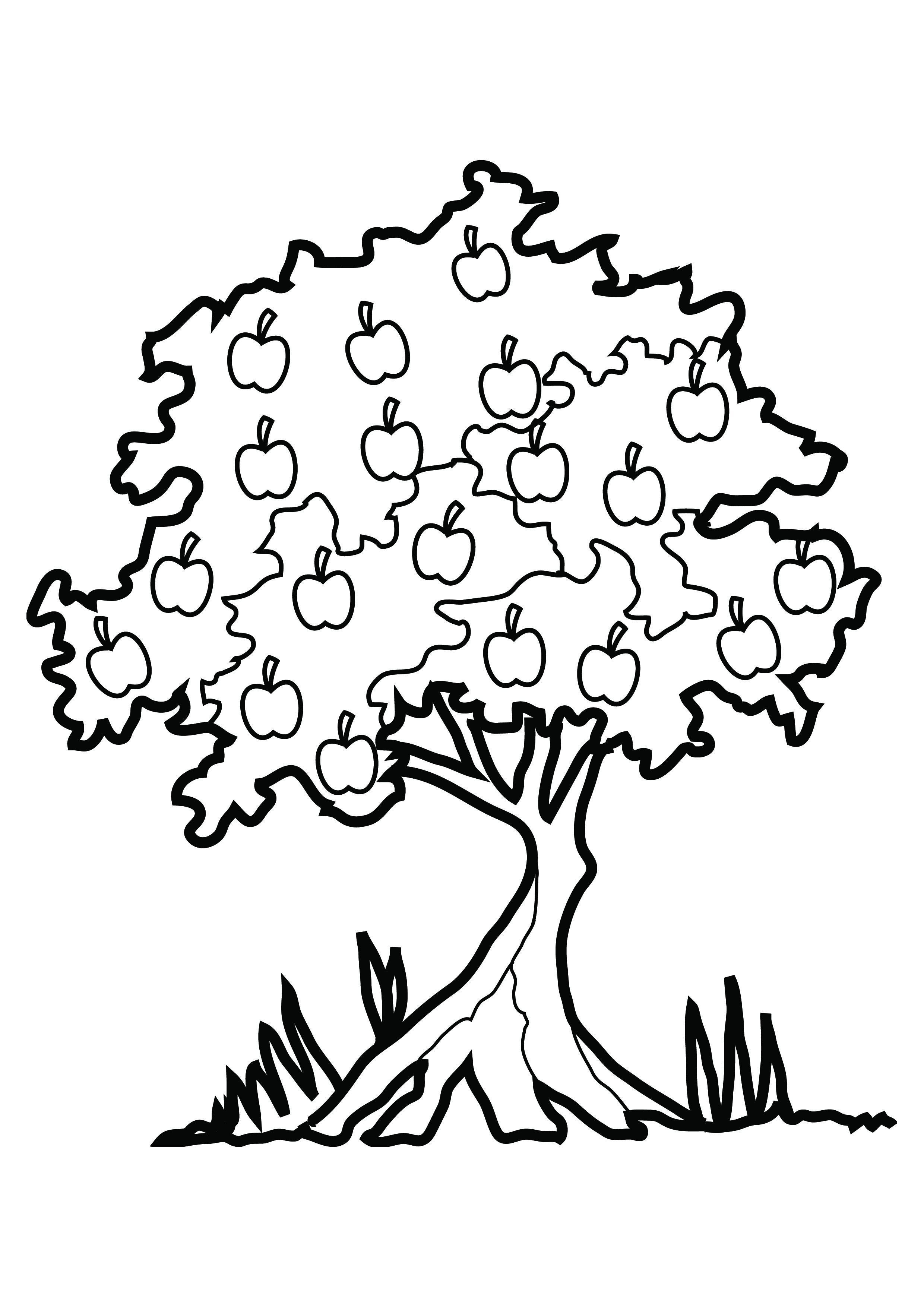 apple tree coloring page - tree coloring pages