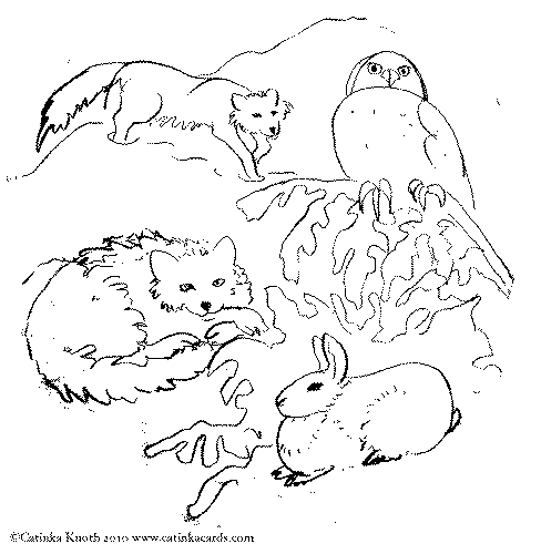 arctic animals coloring pages - animals coloring book 1a