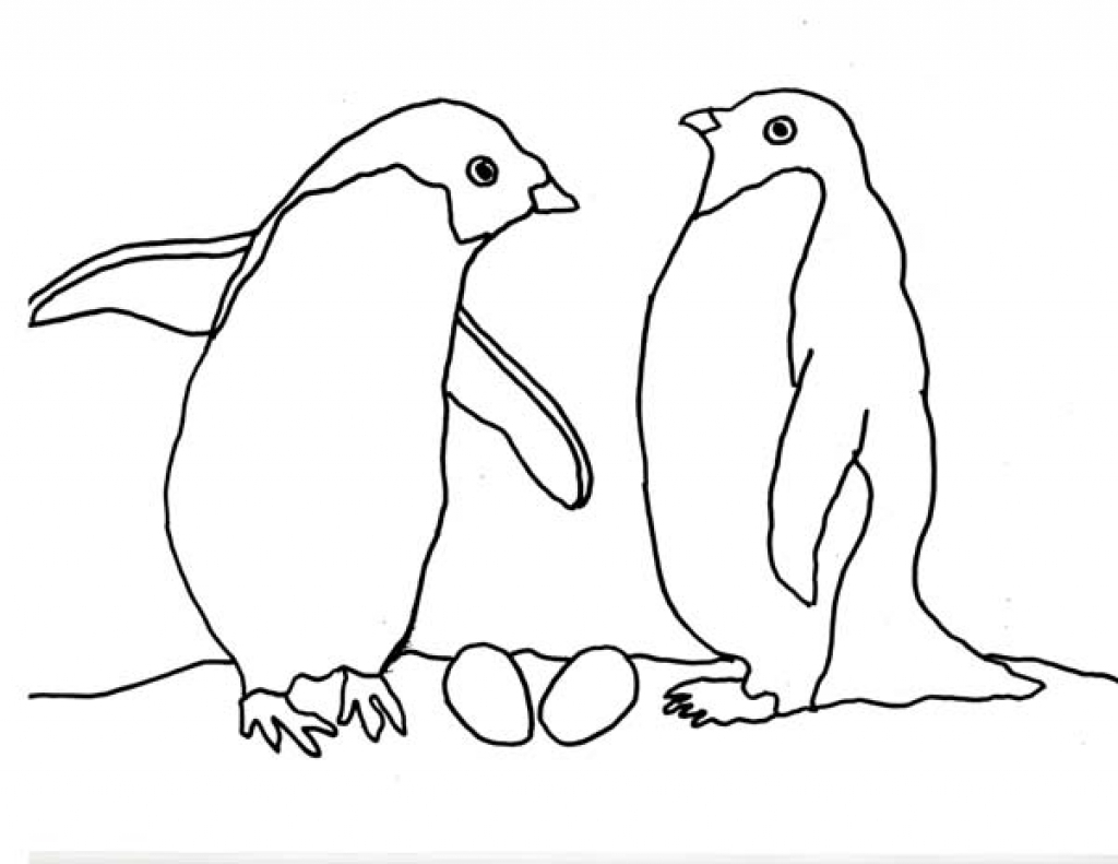 27 Arctic Animals Coloring Pages Printable   FREE COLORING PAGES ...