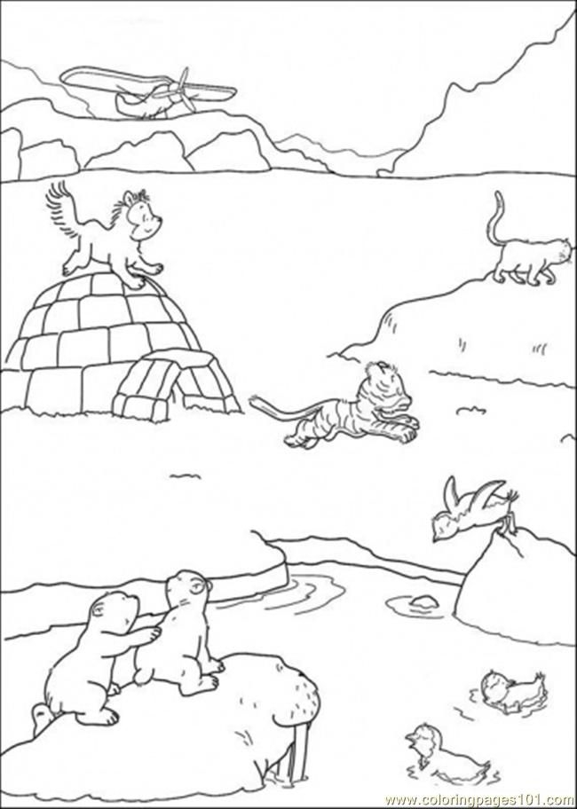 arctic animals coloring pages - arctic animals coloring pages