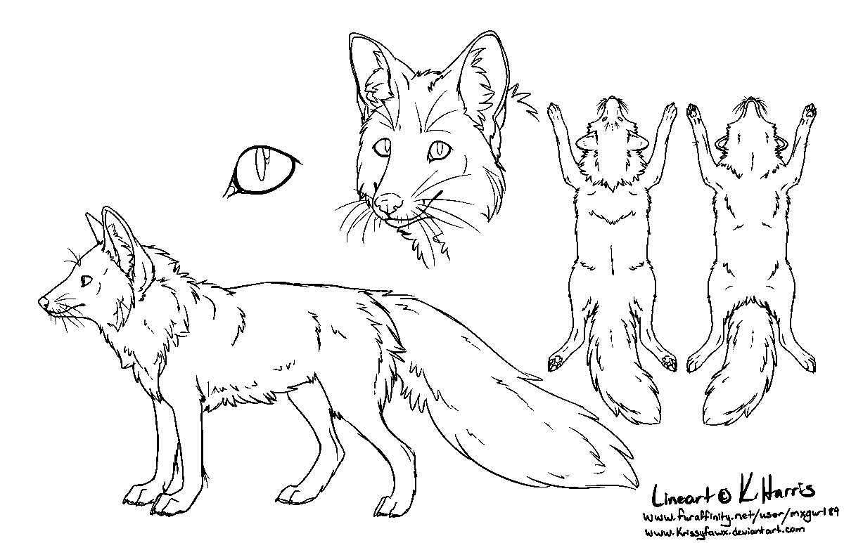20 Arctic Fox Coloring Page Selection | FREE COLORING PAGES