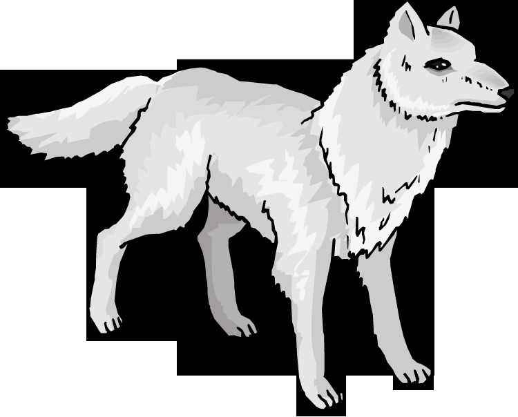 arctic fox coloring page - free clipart