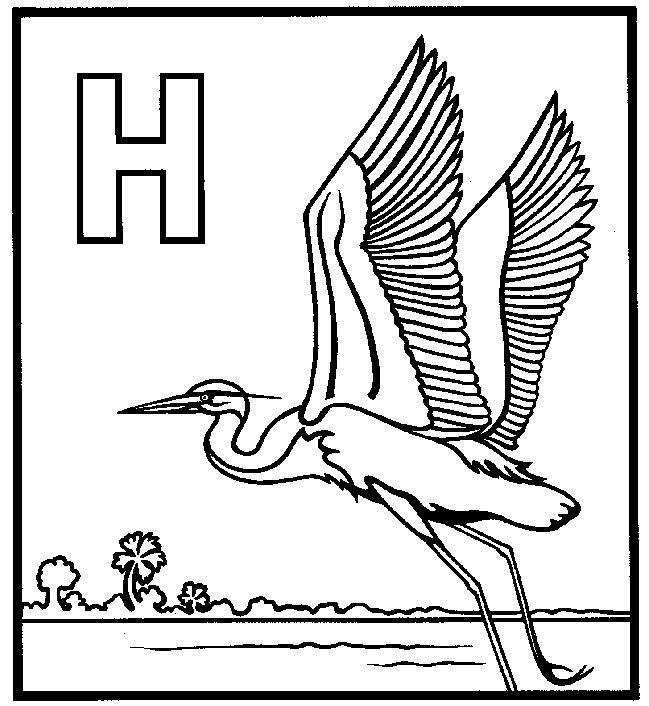 b coloring page - great blue heron coloring 02
