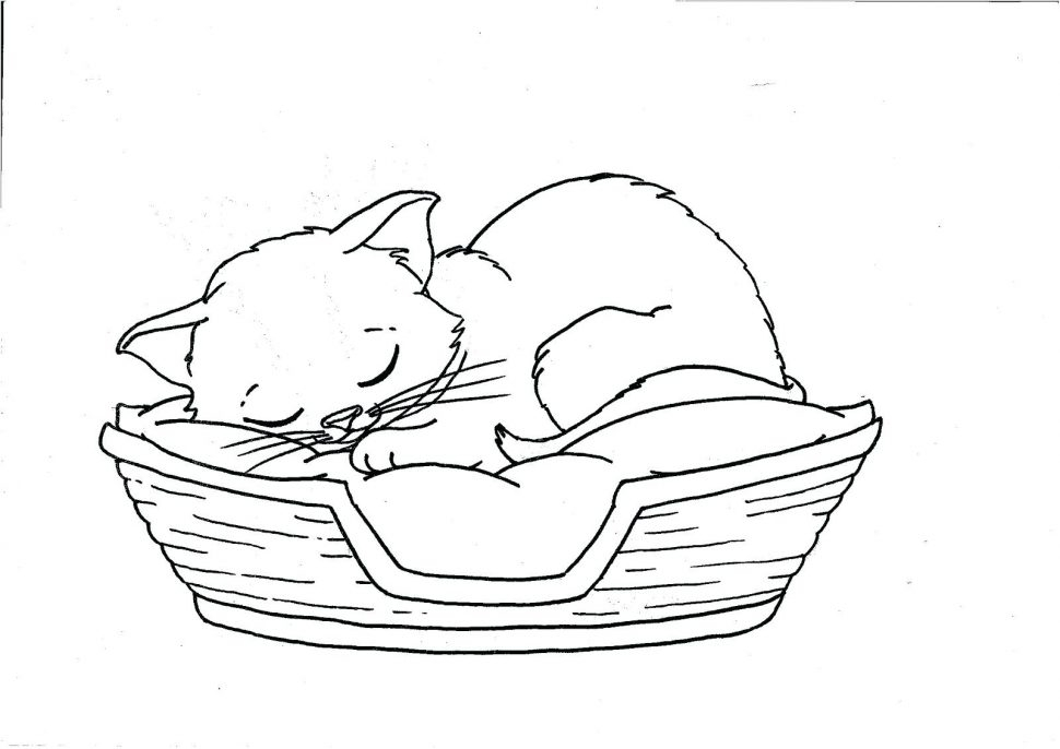 Baby Alive Coloring Pages - Coloring Pages Sleep Coloring Pages Baby Printable