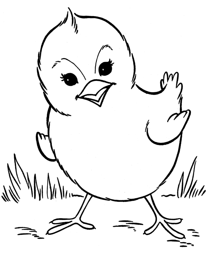Baby Chick Coloring Pages - Baby Chick Coloring Pages Getcoloringpages