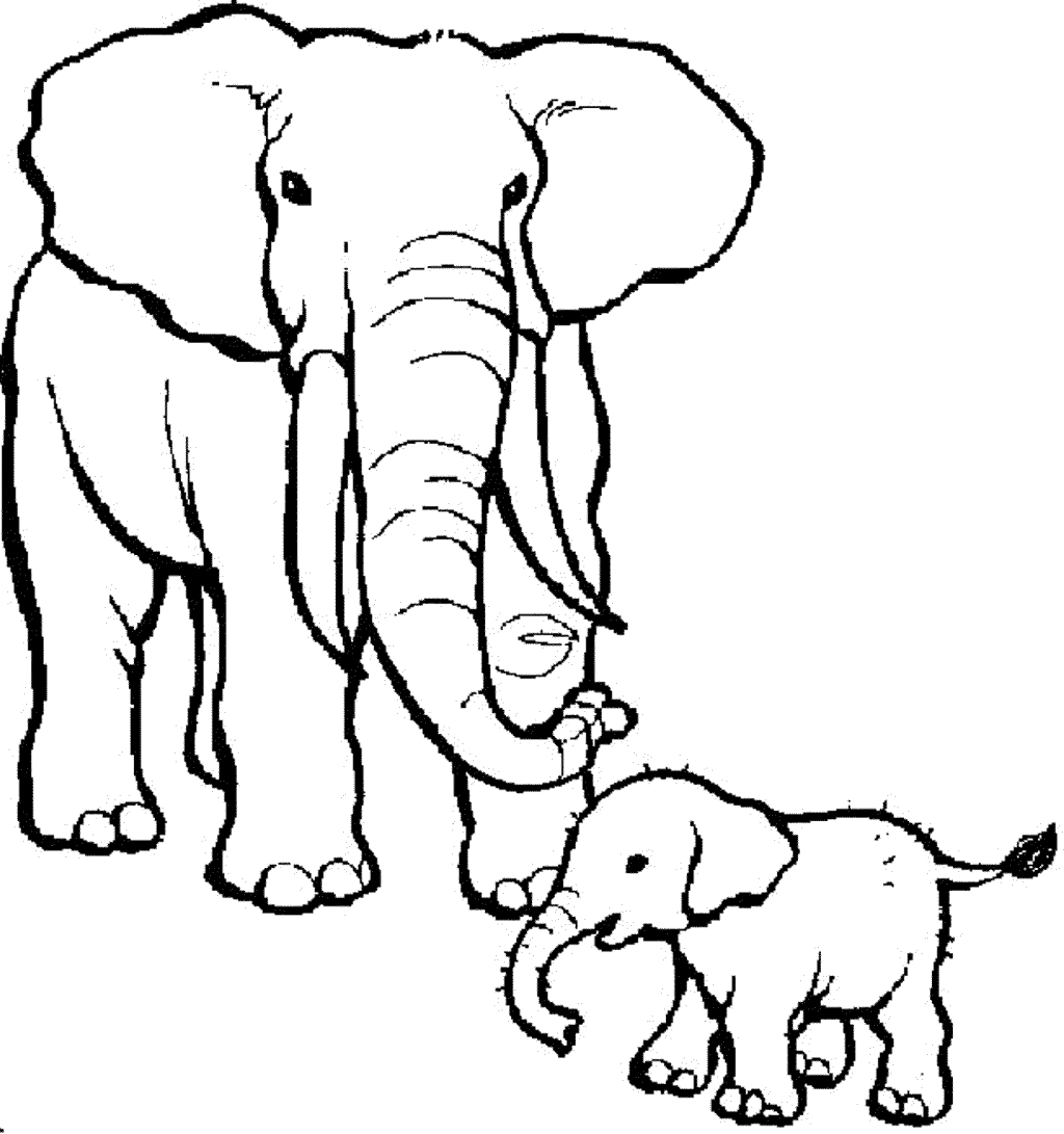 baby elephant coloring pages - cute baby elephant coloring pages