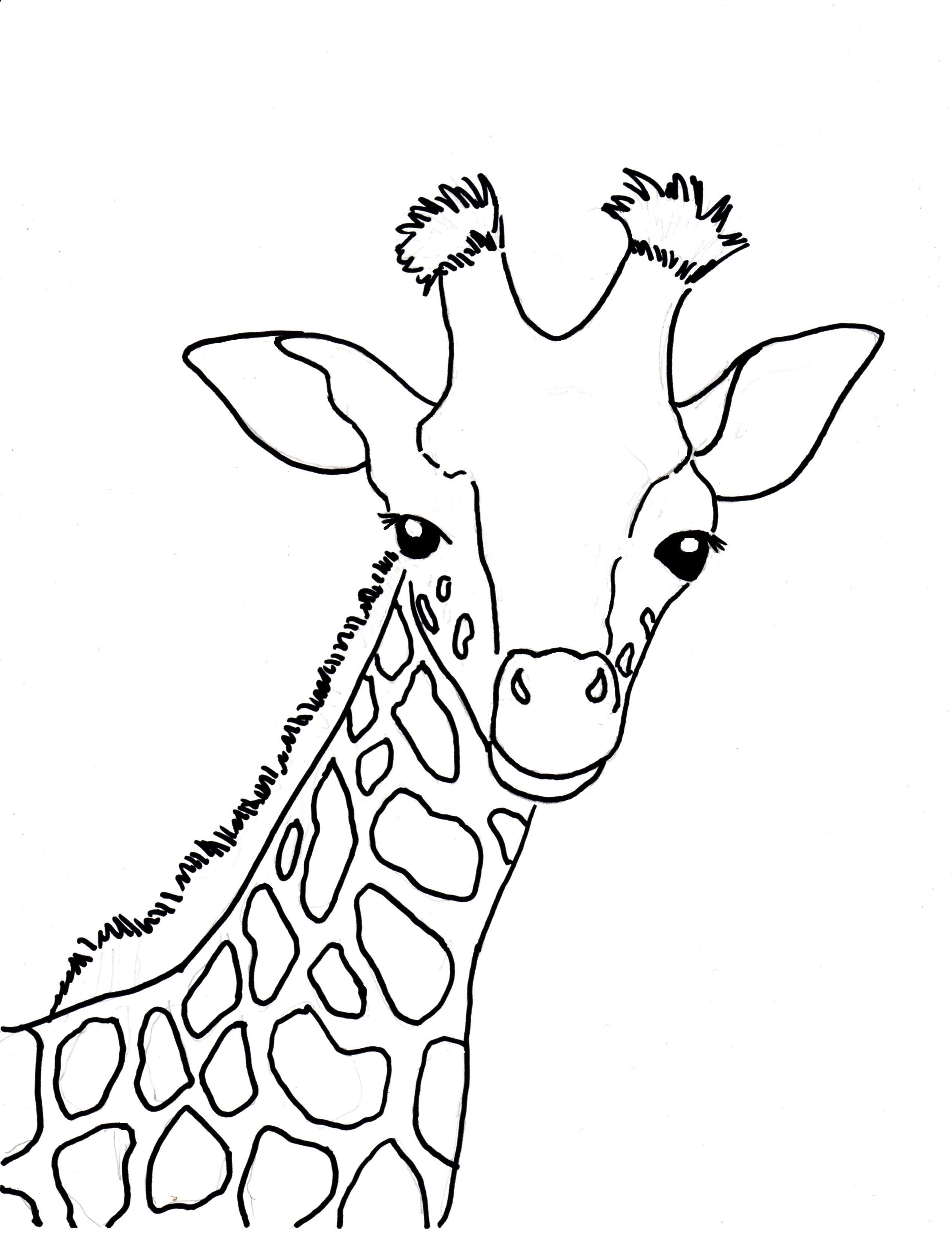 Baby Giraffe Coloring Pages - Baby Giraffe Coloring Page Samantha Bell
