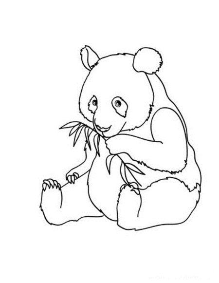 baby panda coloring pages - cute baby panda coloring pages for kids