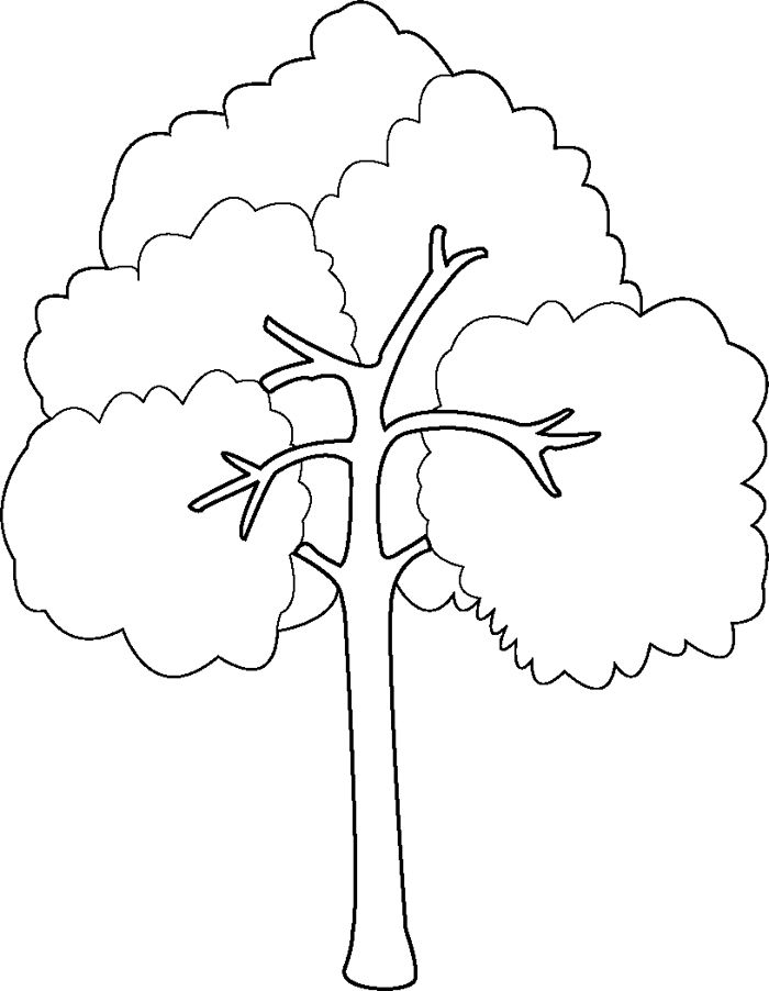 Bare Tree Coloring Page - Best S Bare Tree Coloring Sheet Bare Tree Coloring