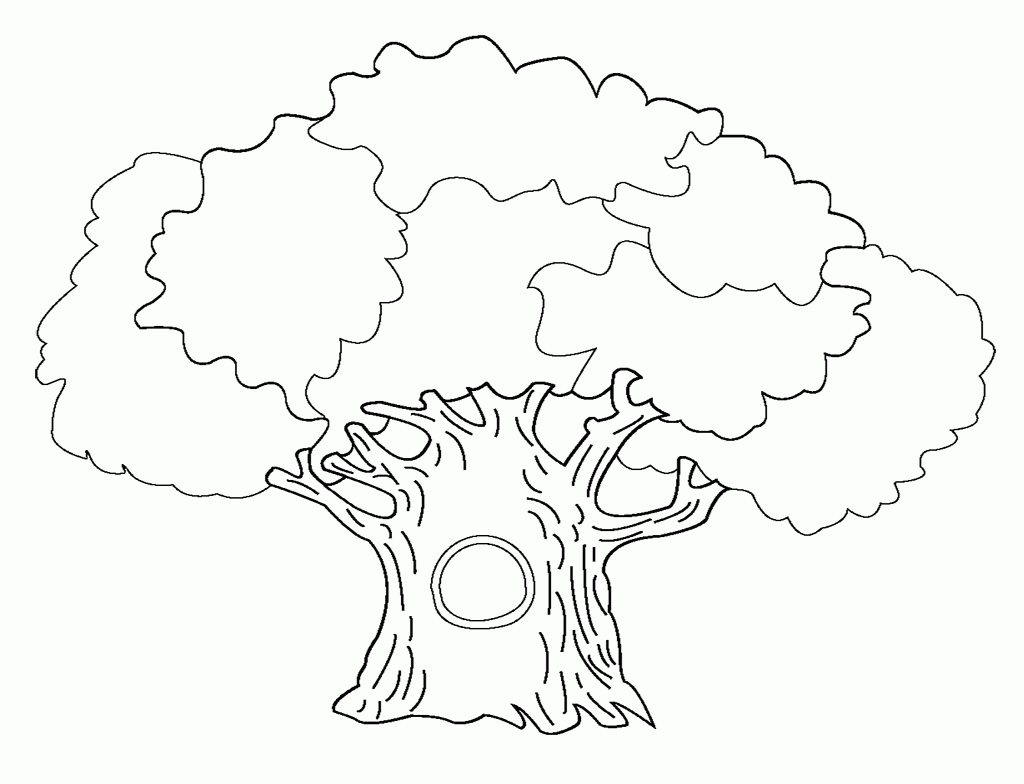 28 Bare Tree Coloring Page Pictures FREE COLORING PAGES Part 3