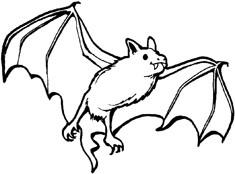27 Bat Coloring Pages Pictures Free Coloring Pages Part 2