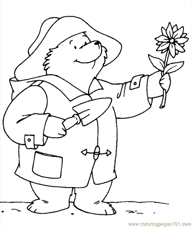 bear coloring pages -