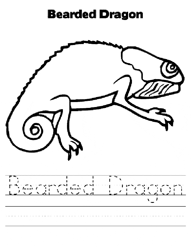 Bearded Dragon Coloring Page - Bearded Dragon Coloring Page Animals town Animals