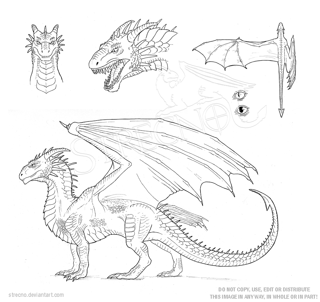 bearded dragon coloring page - Dragon Character Sheet Template