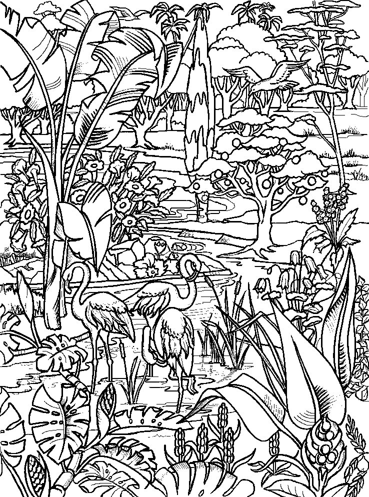 biblical coloring pages - planse de colorat geneza