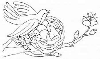 Bird Coloring Pages - Malvorlage Vogel