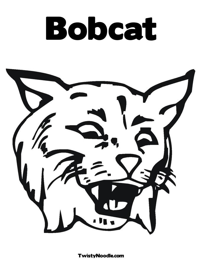 bobcat coloring pages - twistynoodle media img r bobcat bobcat coloring book page