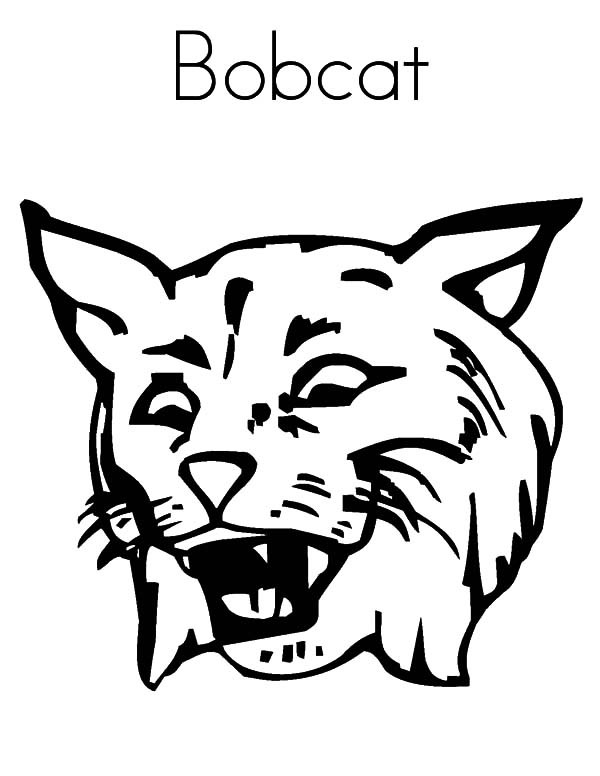 23 Bobcat Coloring Pages Images Free Coloring Pages