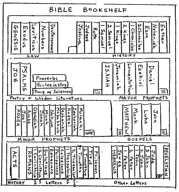books of the bible coloring pages - bible bookshelf coloring pages