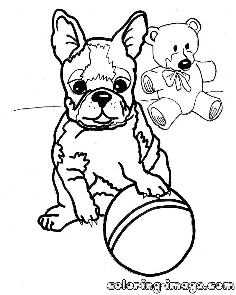 Boston Terrier Coloring Pages - Boston Terrier Coloring Pages to Print Coloring Pages