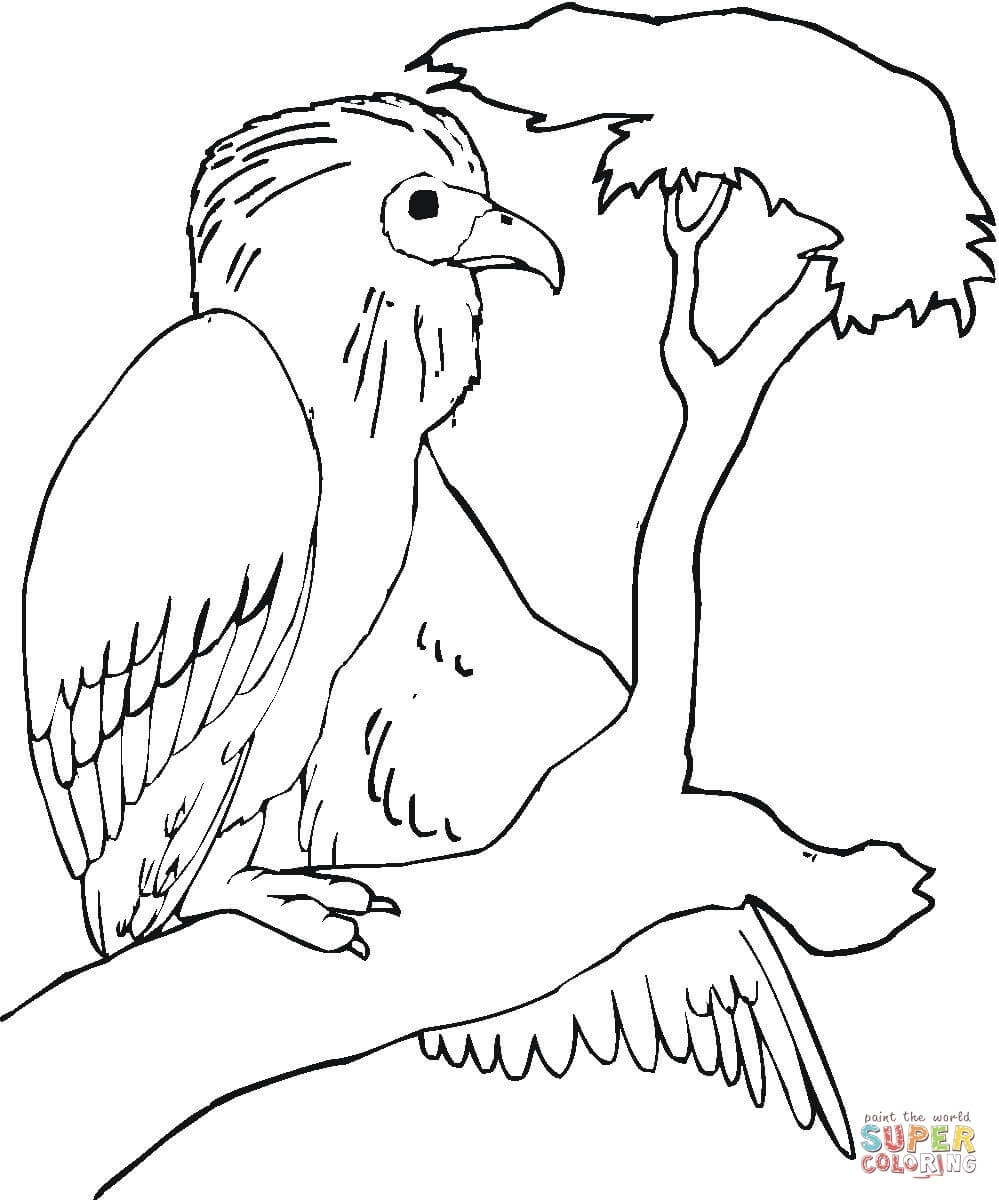branch coloring page - buzzard is sitting on the tree branch