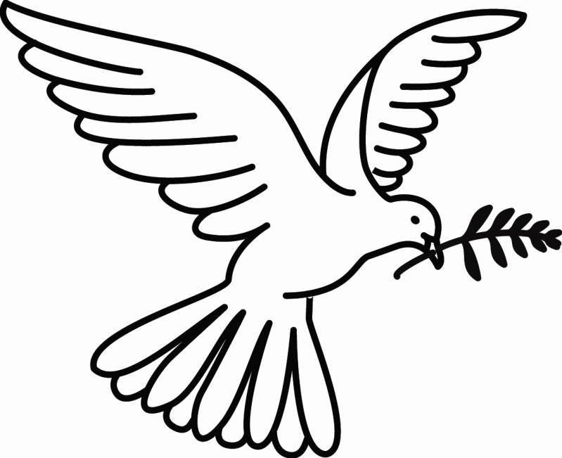 branch coloring page - picture of dove with olive branch