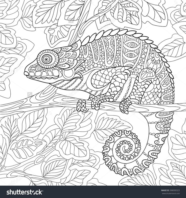 branch coloring page -
