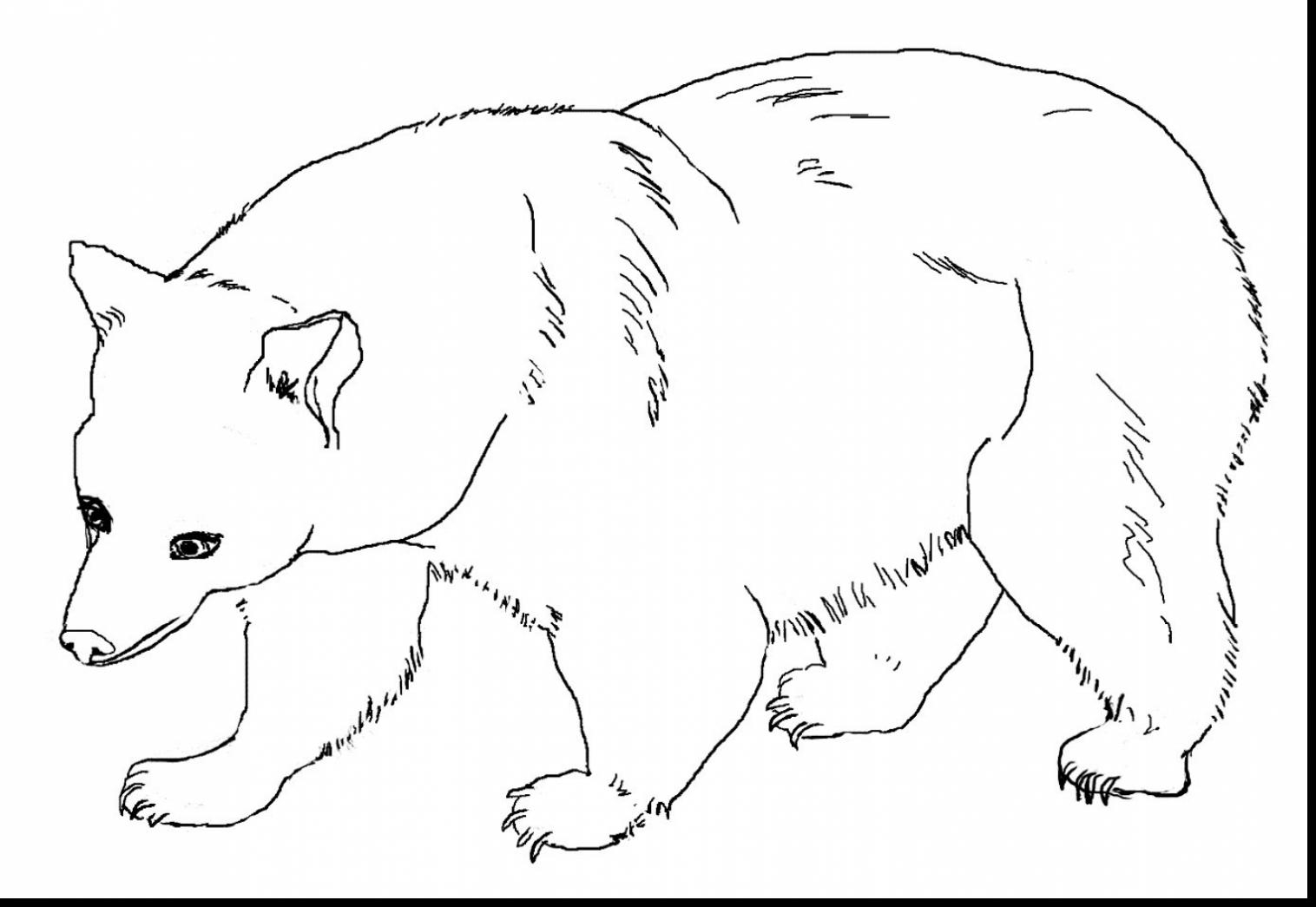 brown bear brown bear coloring pages - coloring suite pages