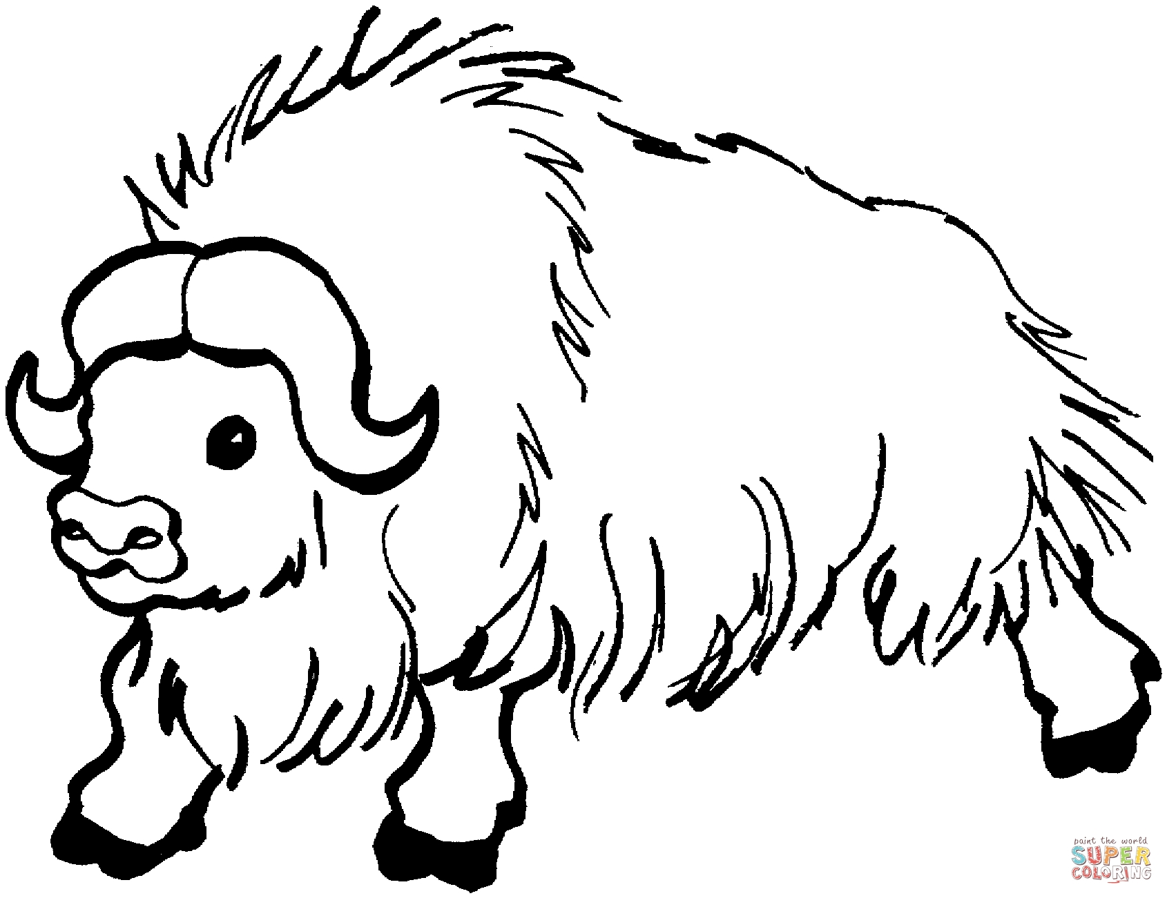 24 Buffalo Coloring Page Compilation Free Coloring Pages
