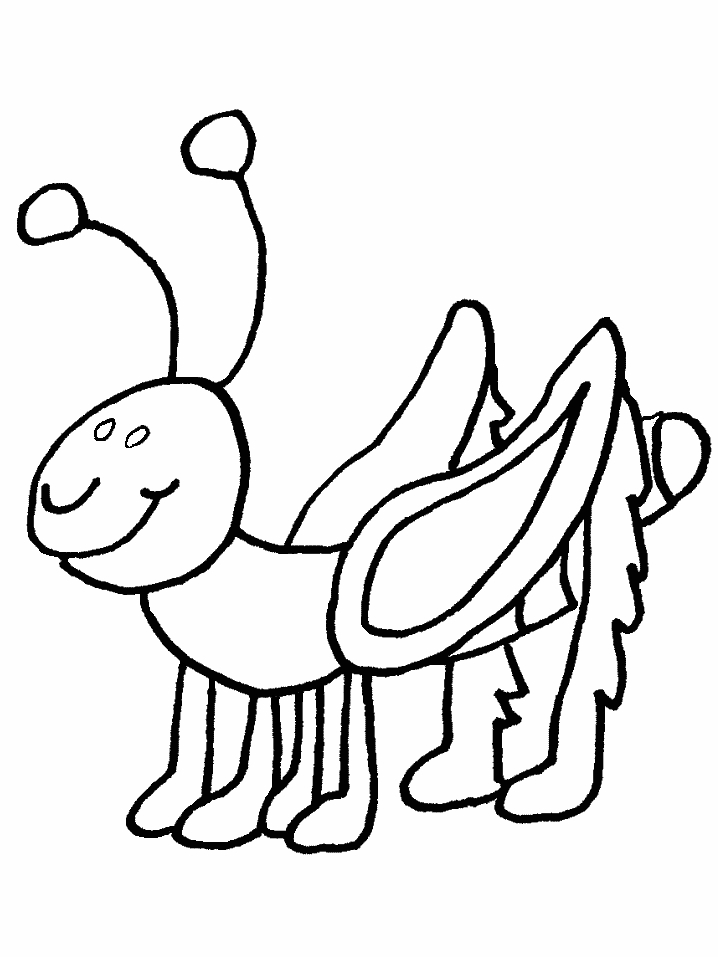 bug coloring pages - bug coloring pages