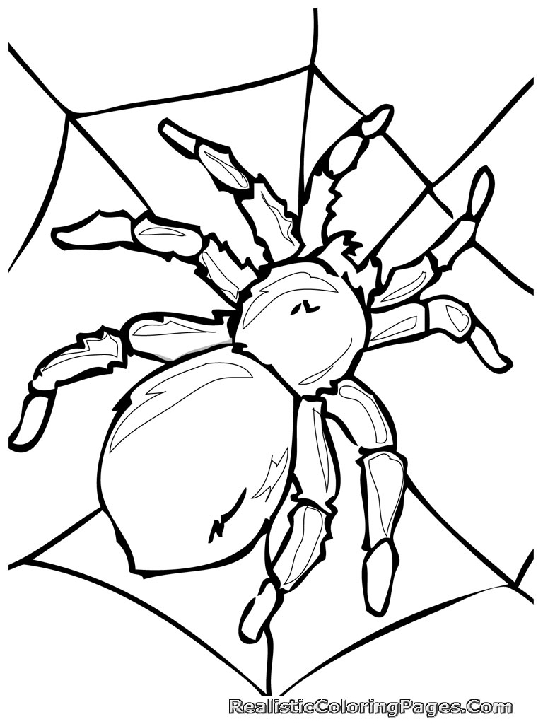 25 Bug Coloring Pages Pictures | FREE COLORING PAGES - Part 3