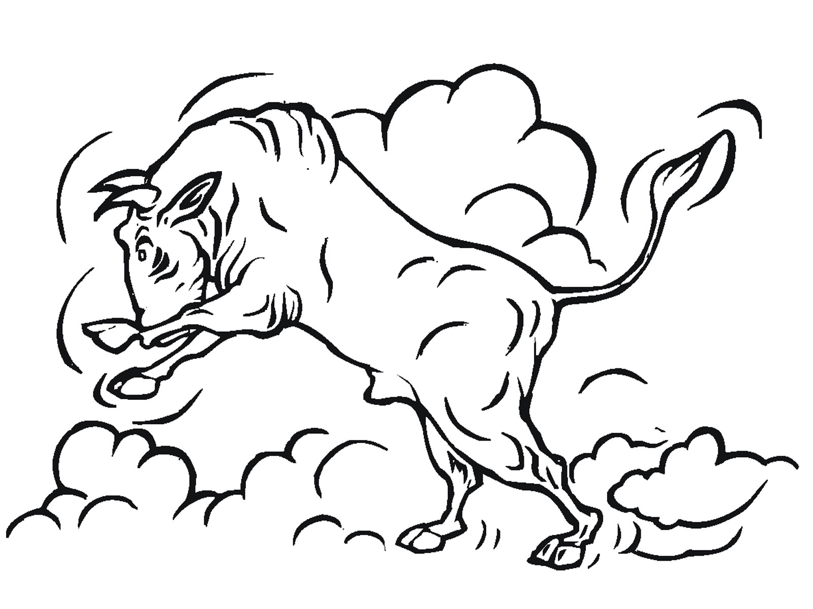 bull coloring pages - Bull