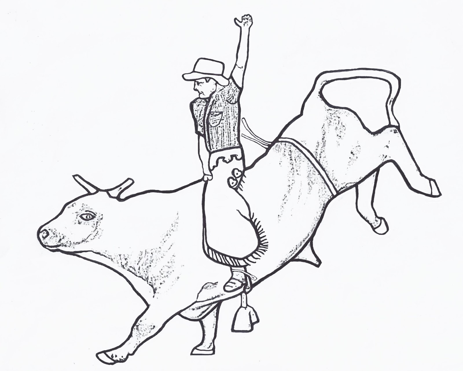bull coloring pages - r=bull rider