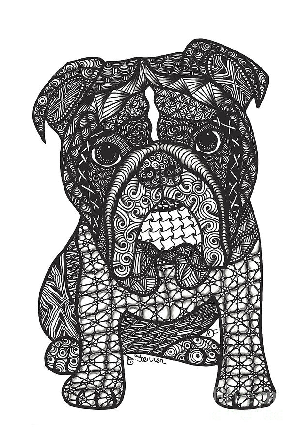 bulldog coloring pages - good dog english bulldog dianne ferrer