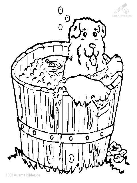 bulldog coloring pages - Hund ins Bad 471