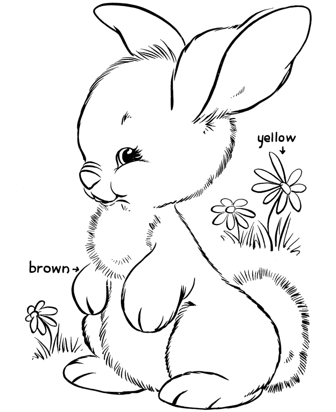 bunny rabbit coloring pages - easter bunny rabbit coloring pages