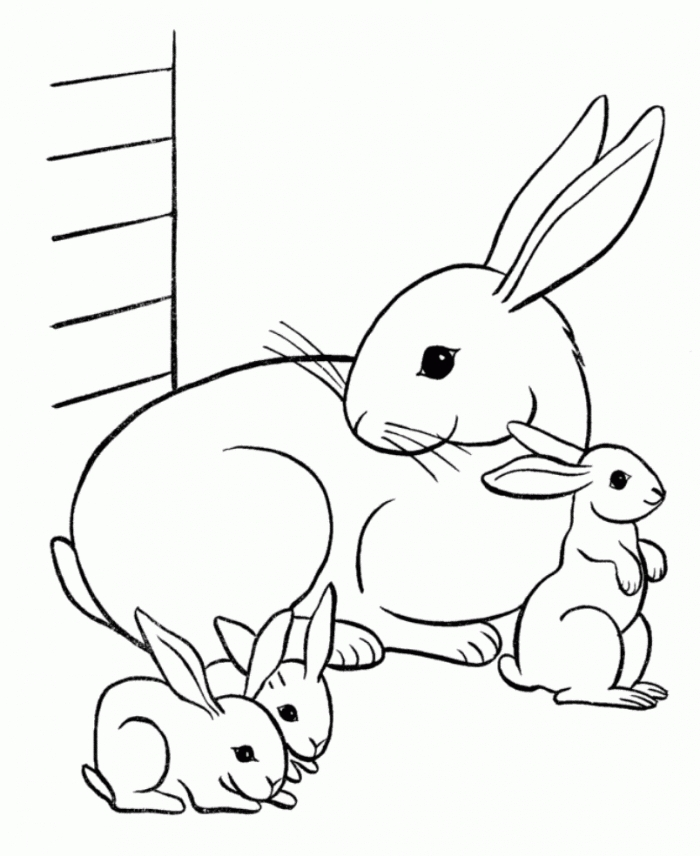 Bunny Rabbit Coloring Pages - Free Printable Rabbit Coloring Pages for Kids