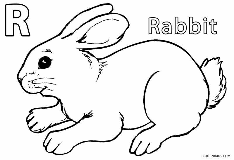 Bunny Rabbit Coloring Pages - Printable Rabbit Coloring Pages for Kids