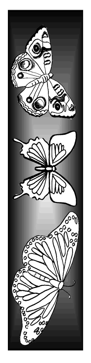 cake coloring pages - 2 butterfly craftstml