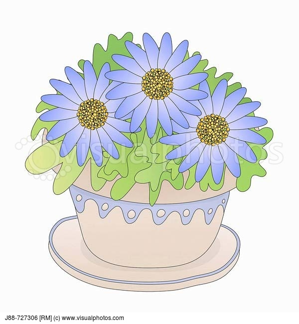 cake coloring pages - how to make a flower pot cake