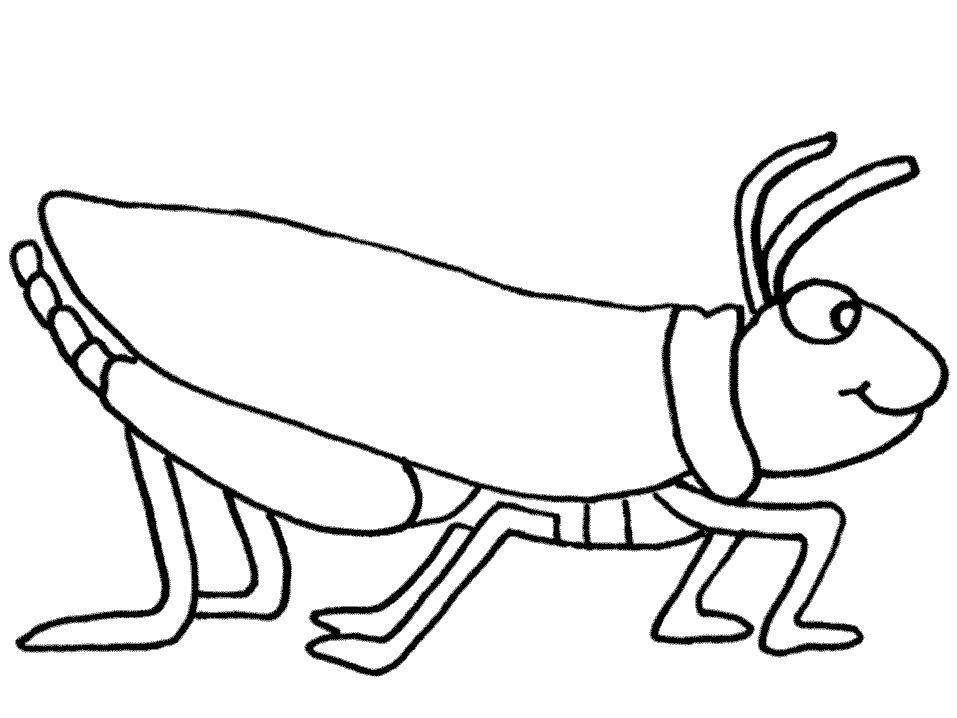camel coloring page - grasshopper coloring pages for kids