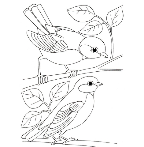 cardinal coloring page - zwei meisen