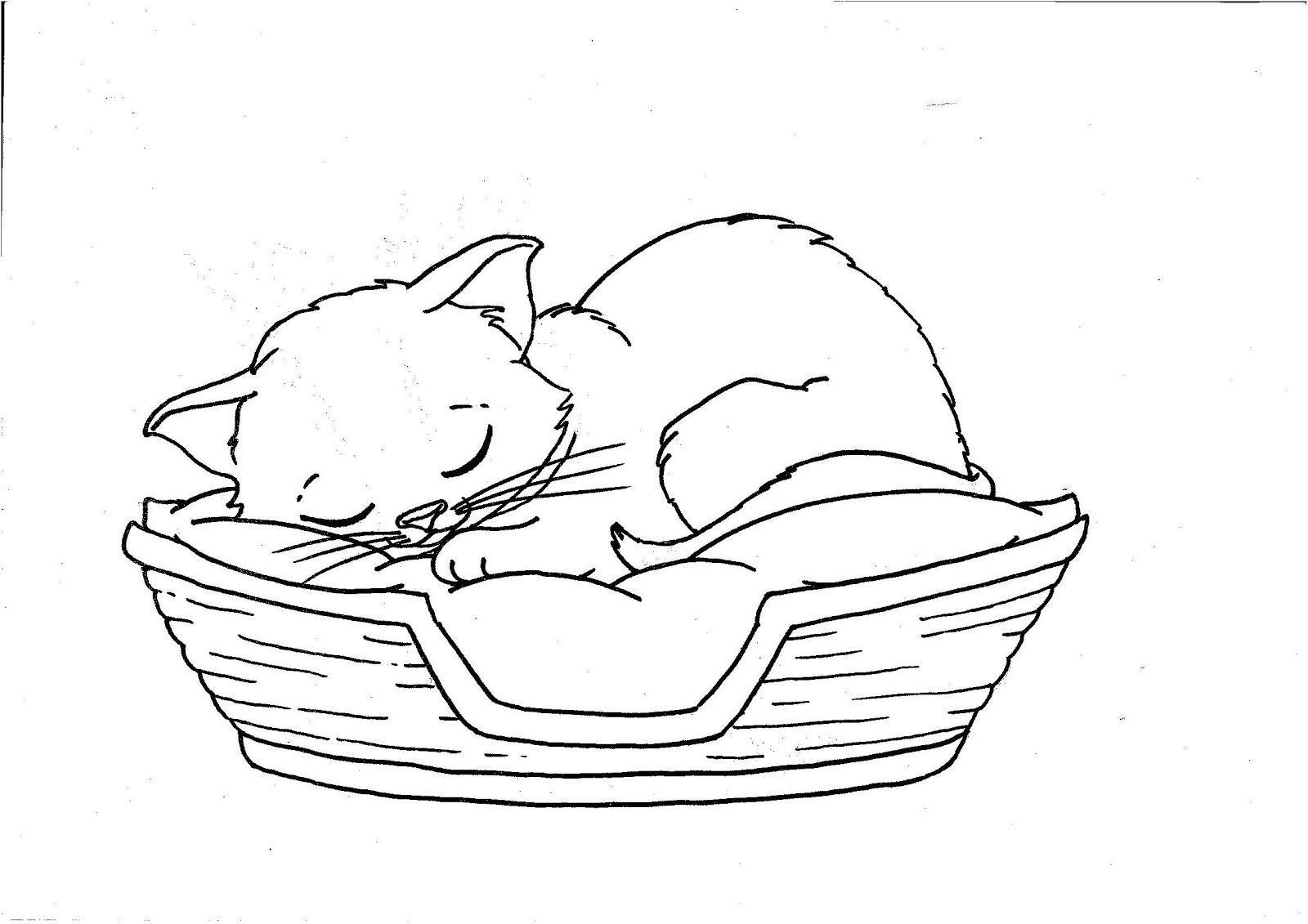 cat coloring pages free printable - kitten coloring pages printable